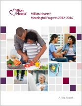 Cover of Meaningful Progress 2012-2016—A Final Report